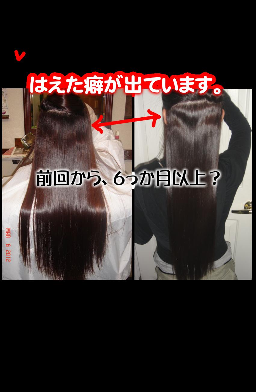 平井駅の優秀技術、持続性は抜群!超ロング期間の縮毛矯正エンジェルパニックは最高の縮毛矯正技術です。