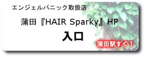 HAIRSparky